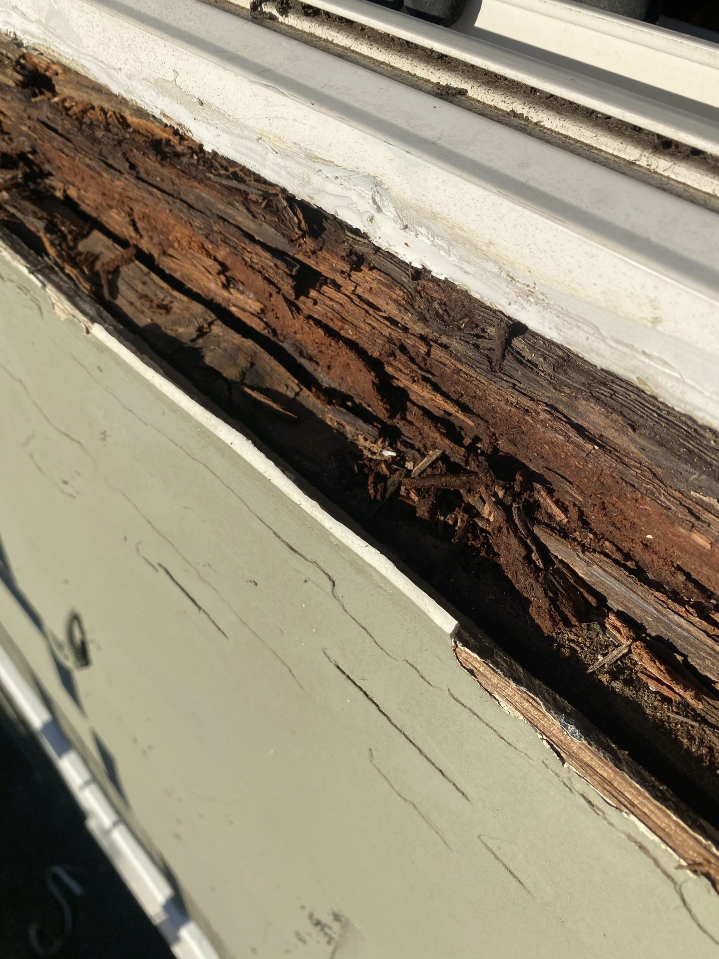 Dry Rot Water Damage Behind Cedar Siding