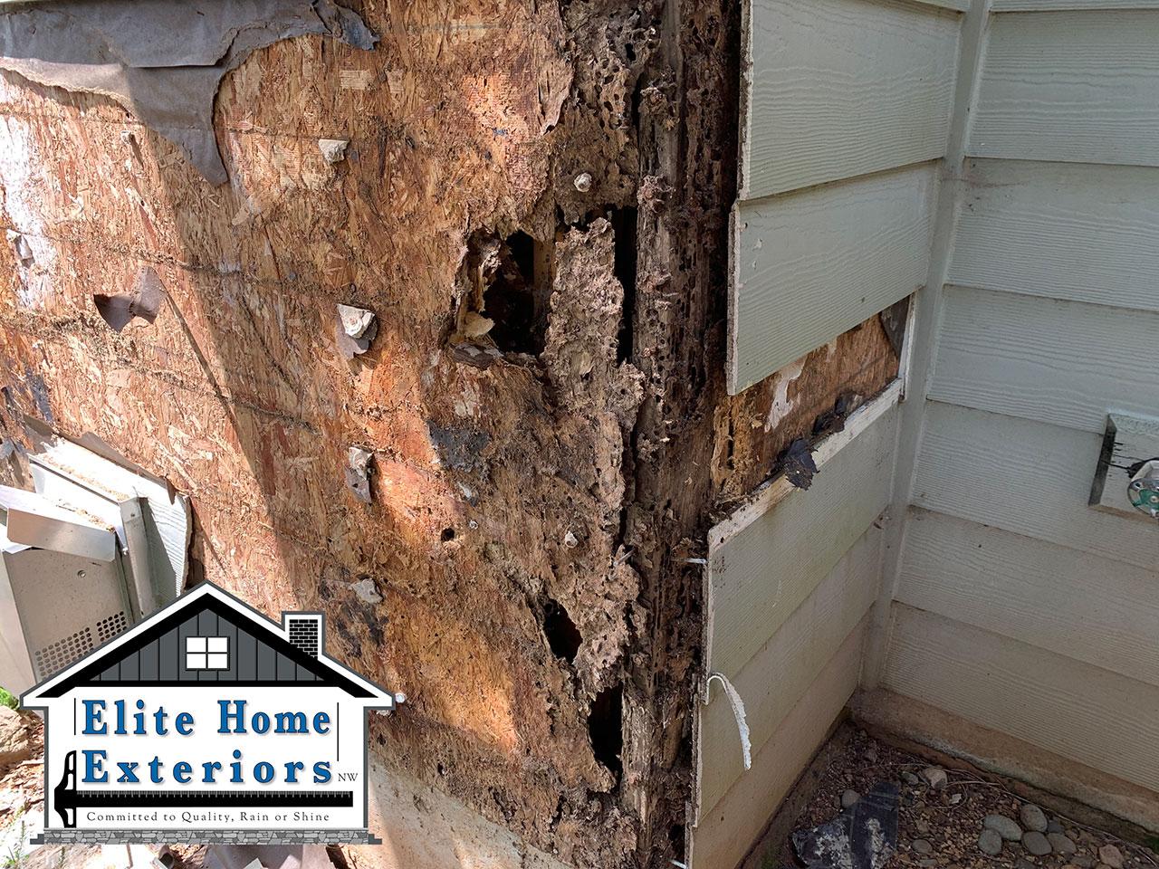 Dry Rot Water Damage Sub Wall Rot Brush Prairie Wa