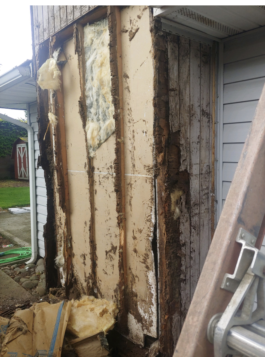 Dry Rot behind Vinyl Siding Battle Ground Wa